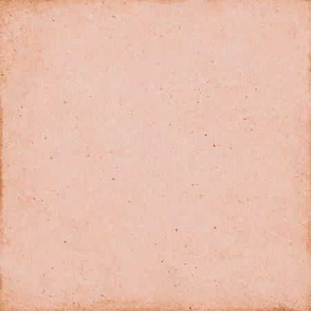 Art Nouveau Coral Pink 20x20